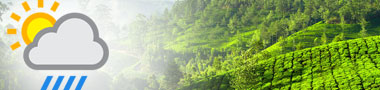 Guest of munnar travel packages
